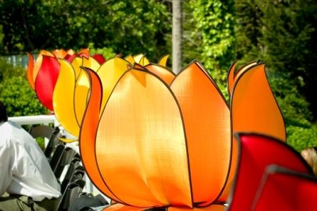 Những mẫu đèn Hoa Sen tuyệt đẹp từ denaladin.com
