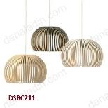 DSBC211