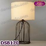DSB170