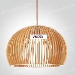 VNC53